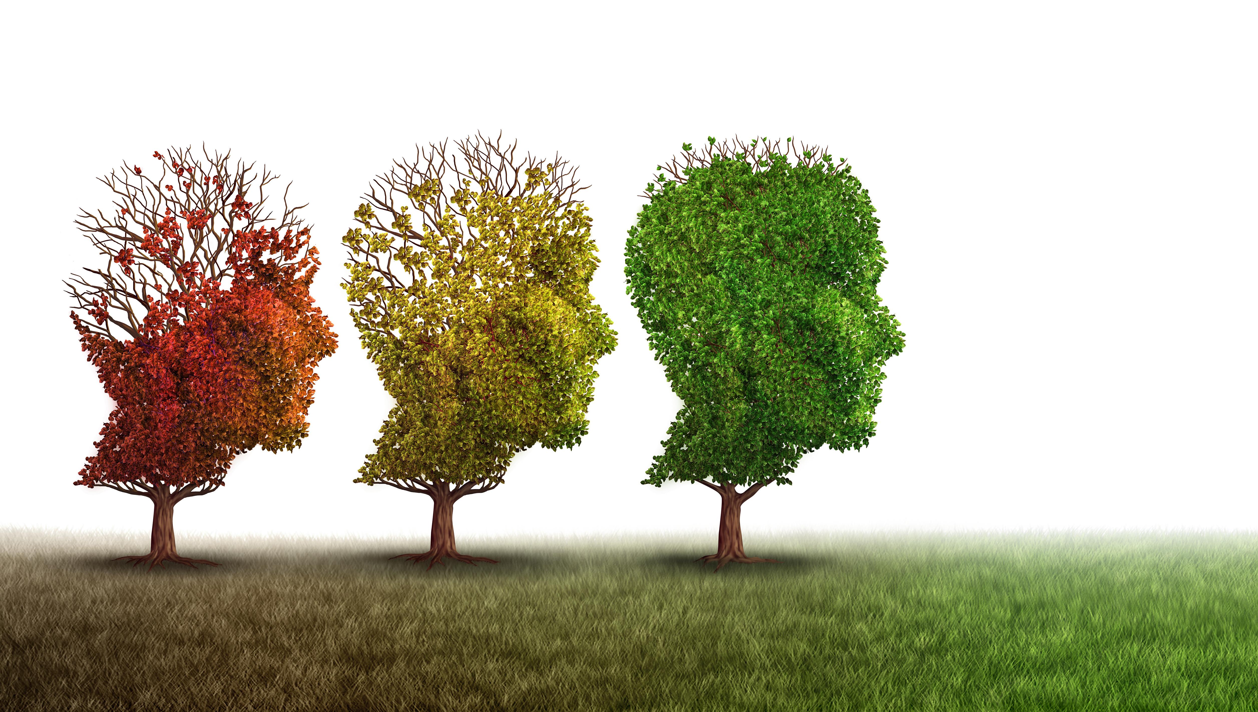 Top im Kopf - mit Bewegung das Gehirn trainieren